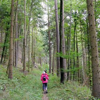 Wanderung des Tourismus- und Albvereins Oberndorf in Altoberndrf am 9. September 2017